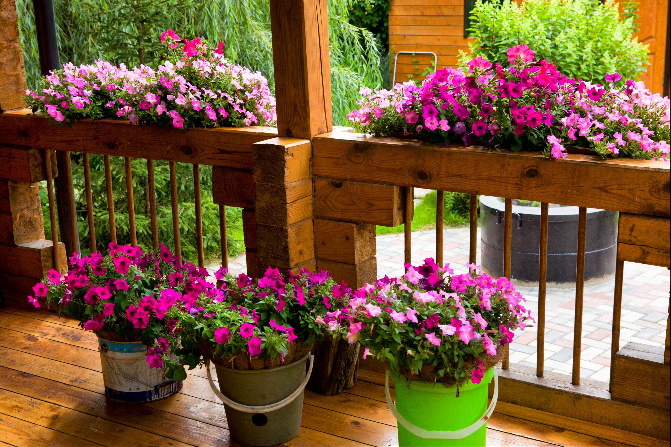 gorgeous pink flowers make great front porch decor ideas