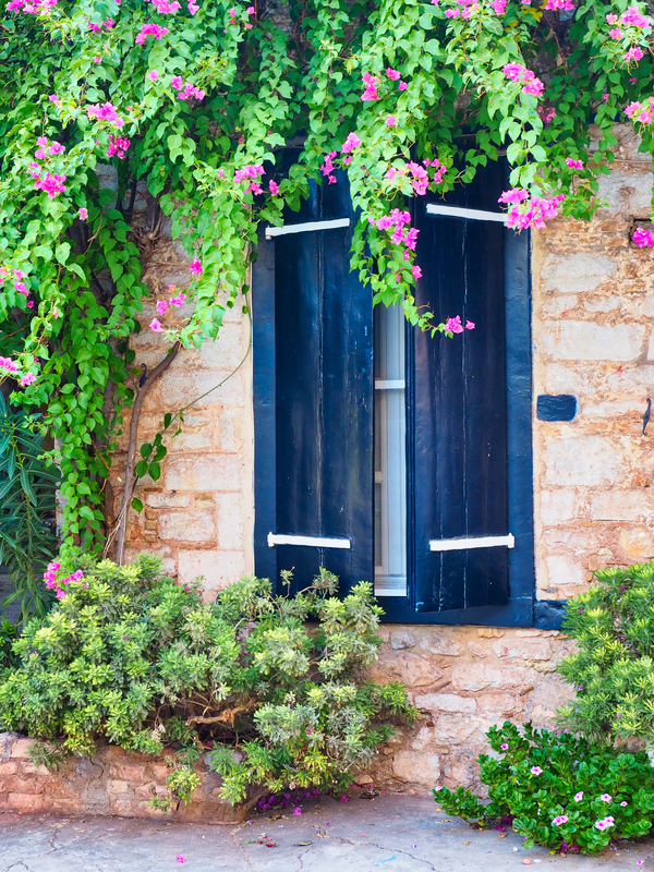 DIY Curb Appeal Projects