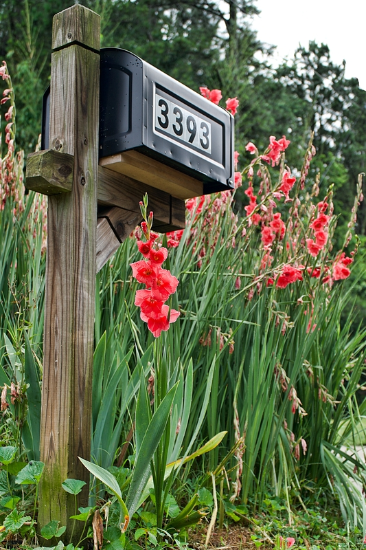 mailbox curb appeal projects