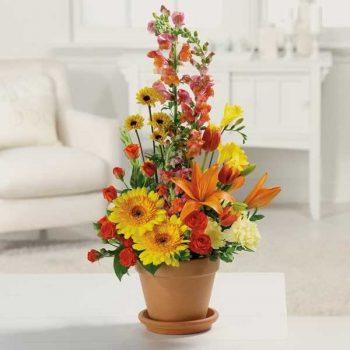 13 Must-Know Flower Arrangement Tips13