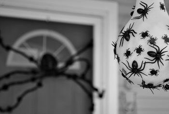 25 of the BEST Halloween Decorations5