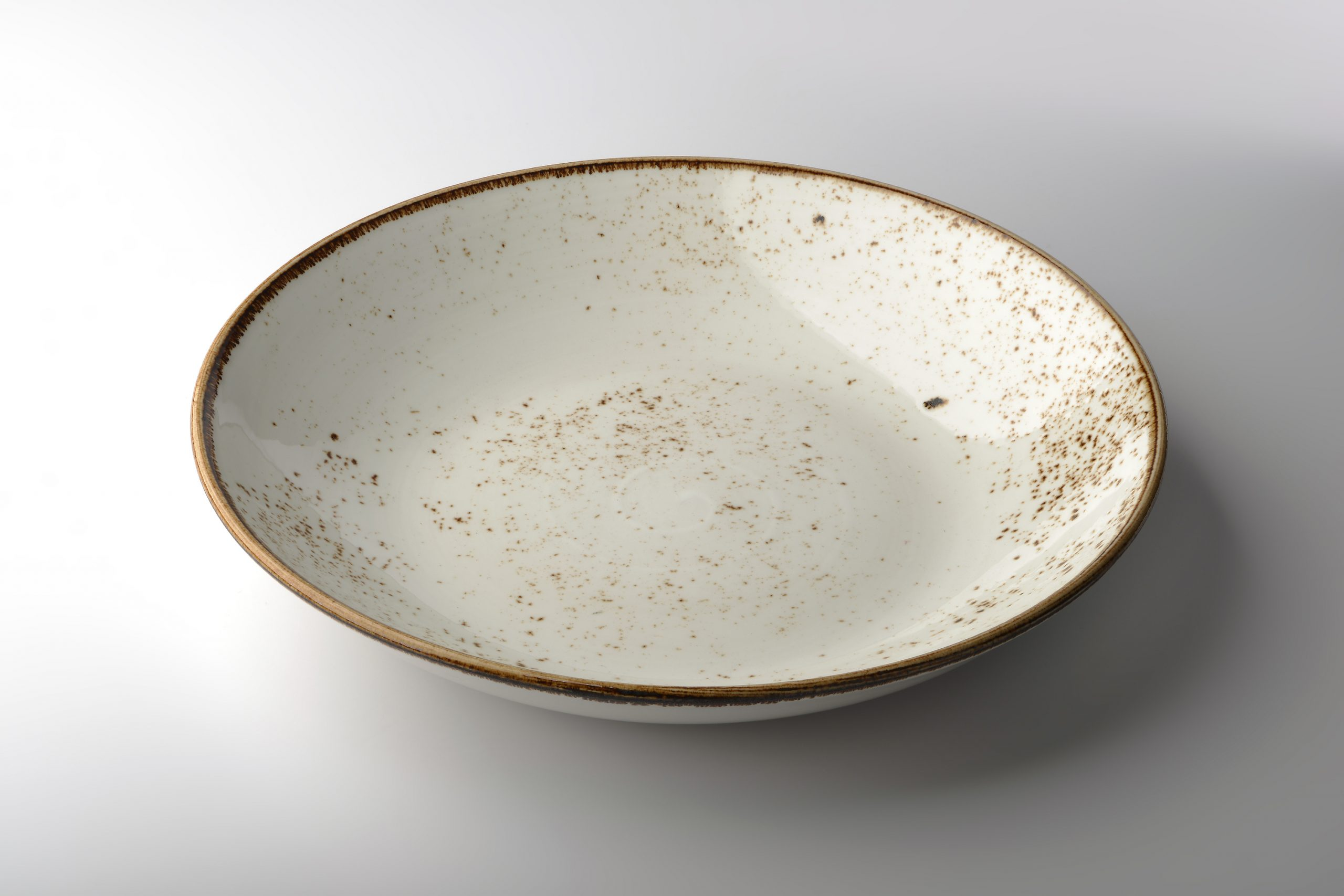A beautiful dinner plate speckled with brown paint that is lead free. Painting plain white dishes is an easy way to beautify your home because it adds color and character.