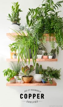 Dirt Cheap Ways to Decorate Your Home8