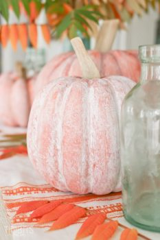 Learn How to Whitewash A Pumpkin| How to Whitewash a Pumpkin, Whitewashing a Pumpkin, Halloween, Halloween Home Decor, DIY Halloween Decor, Fall Home, DIY Fall Home Decor, Fall Home Decor, Popular Pin