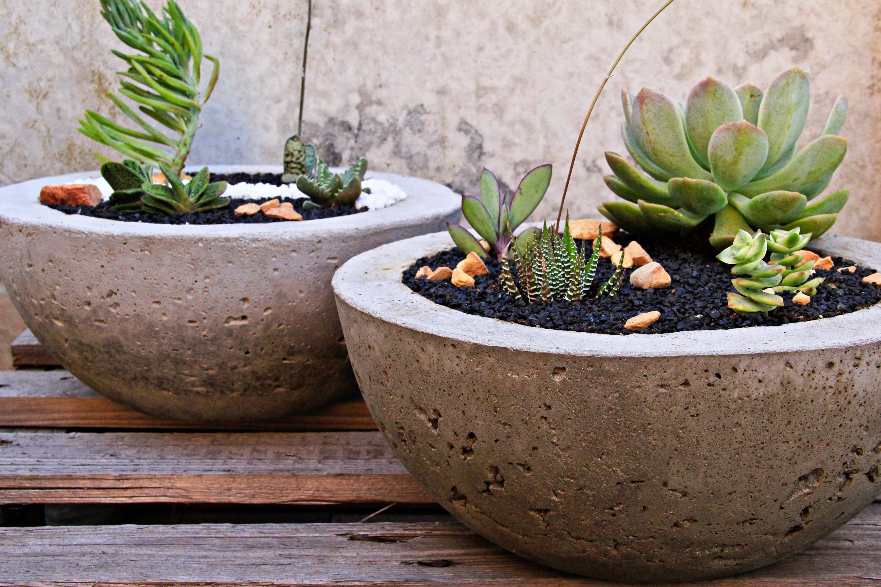 DIY Cement Crafts